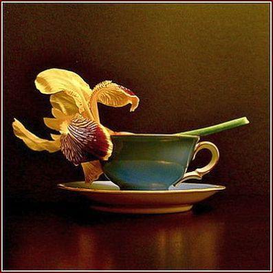 Café da manhã da Dona Rachel.